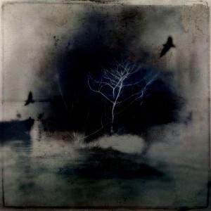 CPACThe-Tree